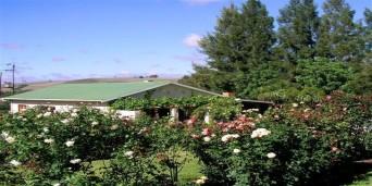Wildebraam Berry Estate