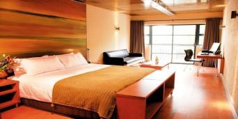 Hippo boutique hotel accommodation in cape town for Hippo boutique hotel