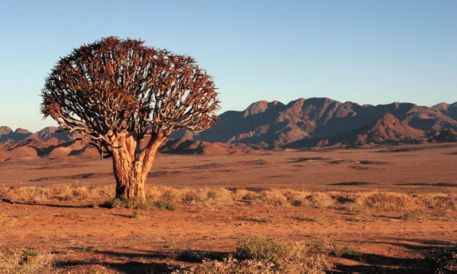 Accommodation at Richtersveld Challenge
