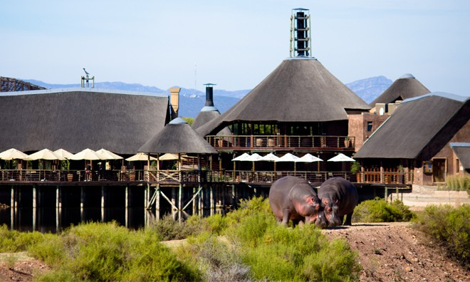 Buffelsdrift Game Lodge, Robertson