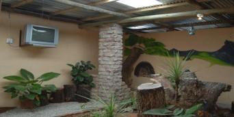 Jo's Guesthouse