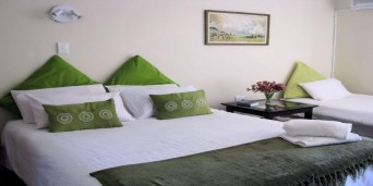 Tipuana Guesthouse
