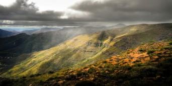 Lammergeier Highlands Reserve