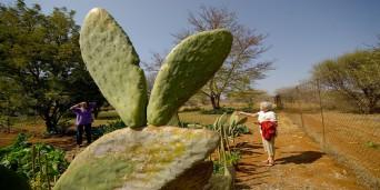 Thabazimbi Tourism