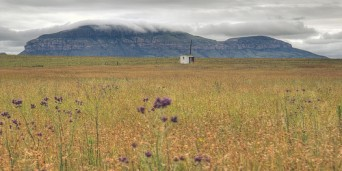 Harrismith Tourism