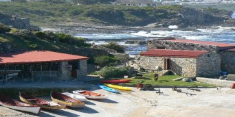 Cape Whale Coast Tourism