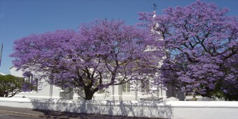 Tulbagh Tourism