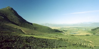 Riebeek West Tourism