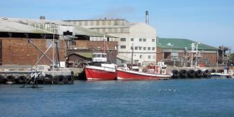 Lamberts Bay Tourism