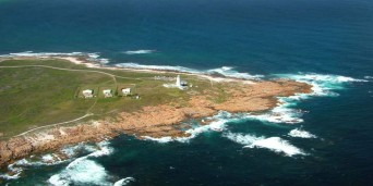 Cape St Francis Bay Tourism