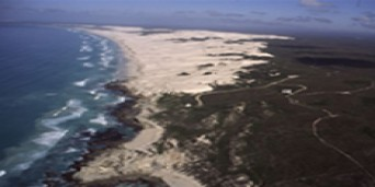 De Hoop Whale Hiking Trail