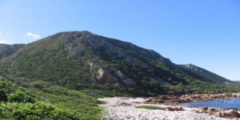 Harkerville Coastal Hiking Trail
