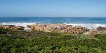 Cape St Francis Nature Reserve Walks