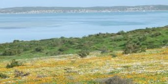 Alexander Bay Tourism