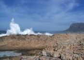 Betty's Bay Tourism