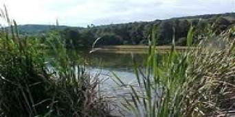 Balgowan Tourism