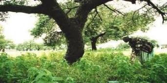 Bushbuckridge Tourism
