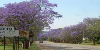 Piet Retief Tourism
