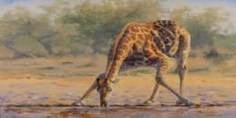 Rietfontein Tourism