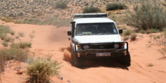 AmAm 4x4 Trails
