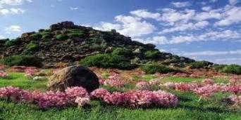 Kimberley Tourism