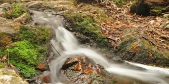 Kranshoek Picnic Spot