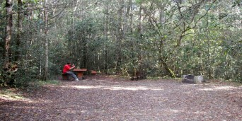 King Edward VII Picnic Site
