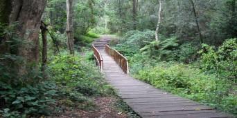 Woodville Picnic Site