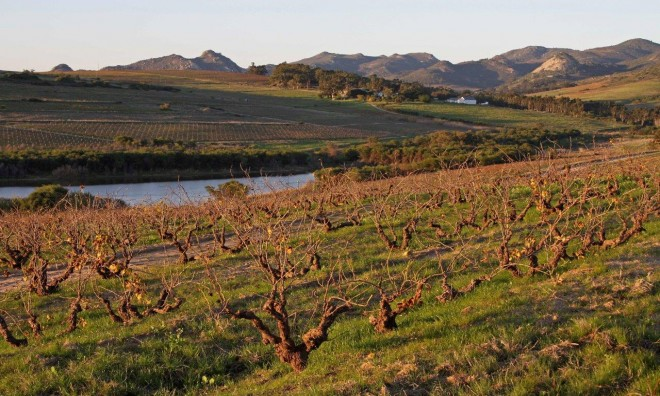 Santam Swartland Wine and Olive Route