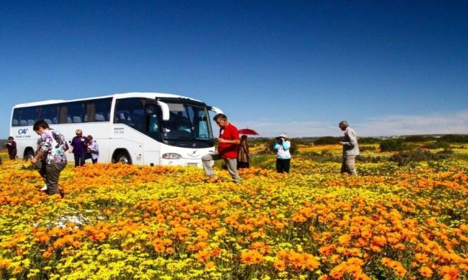 Namaqua Tours