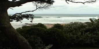 Shelly Beach Tourism
